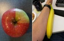 """Muốn biết bàn tay tạo hoá kỳ diệu thế nào, xin mời bạn xem qua loạt ảnh đồ ăn """"như đến từ hành tinh khác"""" dưới đây"""