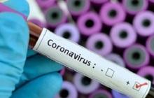 Số ca tử vong vì Covid-19 có thể lên đến 2 triệu trước khi vaccine được dùng toàn cầu