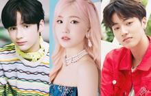 """Top 7 idol ngoại quốc bé tuổi nhất Kpop: Em trai BTS - BLACKPINK còn nhỏ mà đã quá nổi, há hốc vì năm sinh của """"bé"""" No.1"""