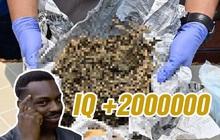 Bắt được 160kg cần sa, bốn cảnh sát Ấn Độ báo cáo 1kg rồi mang 159kg còn lại đi bán