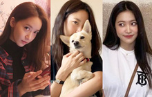 """Bức ảnh """"lú"""" nhất hôm nay: Knet tranh cãi đây là Yoona (SNSD) hay Yeri (Red Velvet), cuối cùng lại hoá... mỹ nhân Avengers?"""