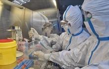 Trung Quốc phát triển bộ xét nghiệm nCoV cho kết quả trong 15 phút