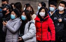 45 ca nhiễm nCoV tại châu Âu đều liên hệ trực tiếp với Trung Quốc