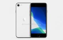 """iPhone 9 thực chất sẽ chỉ gọi tên là """"iPhone"""", không chữ không số màu mè như trước?"""