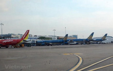 Cục Hàng không: Không có chuyện cấm bay tới Hàn Quốc, Nhật Bản
