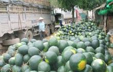 Gần 1.000 container nông sản ùn ứ tại cửa khẩu