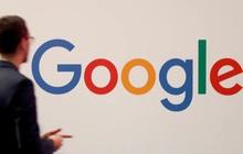 4 điều tiên quyết Google muốn thấy bắt buộc có trong sơ yếu lý lịch xin việc của bạn