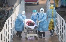 Xác nhận 96 ca tử vong, 630 ca nhiễm nCoV mới tại Hồ Bắc, Trung Quốc