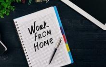 Mang việc về nhà làm online cũng không hề gì vì đã có mấy món này cứu cánh, giá rẻ thôi mà cực kì hữu dụng