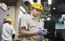 Lao động làm việc ở nước ngoài mất việc do dịch COVID-19 được hỗ trợ ra sao?