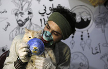 Nghiên cứu: Mèo dễ bị nhiễm SARS-CoV-2, có thể lây cho đồng loại