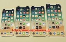 Mô hình iPhone 12 lộ diện thực tế: Chỉ thay đổi tí xíu, có nhiều kích thước khác nhau