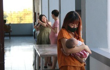 Quảng Nam tiếp tục tiếp nhận 99 bà bầu về từ Nhật Bản