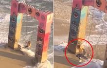 Đang ngồi chơi xích đu trên bãi biển, cô gái hốt hoảng bỏ chạy thục mạng vì một lý do kinh hoàng, dân mạng xem clip ai cũng thót tim