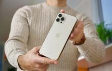 iPhone 12 Pro Max đang rất hot, nhưng không nên mua ở thời điểm này!