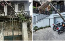 Chỉ vì thích 1 cây anh đào trước cổng ở Đà Lạt, chàng trai mua luôn cả căn nhà cũ và cải tạo thành nơi cực đáng sống