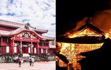 """Toà lâu đài """"đen đủi""""nhất Nhật Bản: """"Mới"""" 600 tuổi mà bị thiêu rụi tới 5 lần, giờ chỉ còn tàn tích"""