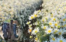 """Tin thời tiết 25/11: Hoa mùa đông đã nở, người vẫn ná thở trong """"giáp ninja"""" chống nắng"""