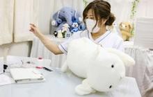 """Độc lạ phòng khám chữa bệnh cho... thú nhồi bông ở Nhật, """"viện phí"""" có thể lên đến 111 triệu"""