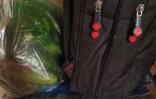 Sinh viên mang balo với túi rau lên thành phố, nhìn xuống dưới ai cũng cay mắt: Chỉ có cha mẹ mới xót con như vậy!