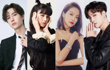 Tranh cãi Top idol Kpop nổi tiếng nhất ở Trung Quốc: Vương Nhất Bác lên ngôi vương, BTS mất dạng, Lisa (BLACKPINK) và Victoria thấp bất ngờ