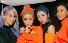 Trưởng nhóm Solar tiết lộ chỉ có 3 khán giả đến xem buổi diễn đầu tiên của MAMAMOO, nghe mà xót xa!