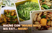 Những đặc sản làm từ sâu của Việt Nam khiến nhiều người khóc thét, có loại còn được săn lùng với mức giá cao chót vót