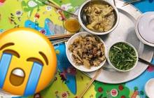 """Bữa cơm sinh viên thịnh soạn nhưng không một ai đụng đũa, lý do khiến ai xem cũng """"tự nhục"""""""