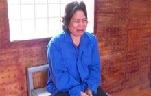 Thêm thông tin vụ mẹ thuê người bắt con gái