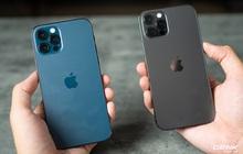"""2 màu hot của iPhone 12 Pro Max bản VN/A bắt đầu về hàng """"dồi dào"""" tại các đại lý sau thời gian khan hiếm"""