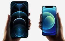 iPhone 12 là dòng iPhone mới bán chạy nhất của Apple trong 3 năm nay