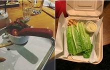 """Những lần nhà hàng phục vụ suất ăn mà như muốn """"đuổi cổ"""" khách đi, chất lượng còn tệ hơn quán ven đường nữa!"""