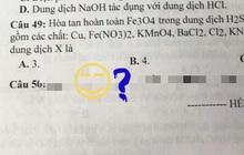 Đề kiểm tra xuất hiện câu hỏi có nội dung lạ, học trò đọc xong cười không nhặt được mồm nhưng chẳng biết giáo viên chấm điểm bằng cách nào