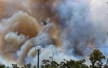 Cháy rừng vượt kiểm soát, Australia ban bố cảnh báo khẩn cấp tại Perth
