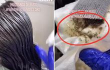 Chải tóc cho bé gái, người phụ nữ sởn hết da gà với thứ lúc nhúc rơi ra đầy từ đầu đứa nhỏ, video quay lại thu hút hơn 30 triệu lượt xem