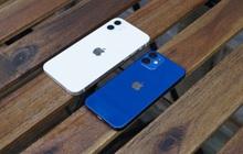 """Đằng sau thất bại của iPhone 12 mini là những toan tính khôn ngoan đến mức những hãng smartphone nổi tiếng như Samsung và Google cũng đều phải """"học hỏi"""""""