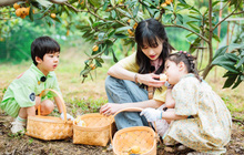 """Trịnh Sảng bị netizen chỉ trích giả tạo khi đòi bỏ con mình nhưng lại lên show chăm sóc """"con nhà người ta"""""""