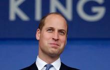 Sinh ra với vận mệnh kế vị ngai vàng, Hoàng tử William gây sốc khi thẳng thắn thừa nhận không muốn làm vua với chia sẻ đầy chua xót
