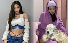 """Jennie xinh thế nhưng cũng có màu trang phục không thể mặc đẹp, nghe chuyên gia Hàn chia sẻ mà """"vỡ lẽ"""" được bao điều"""