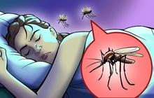 Hóa ra đây là lý do tại sao muỗi luôn vo ve ở bên tai chúng ta và cách cực đơn giản để giải quyết sự khó chịu này