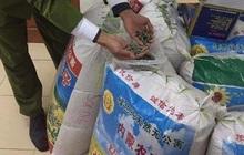 Thu giữ hơn 1 tấn hạt hướng dương tẩm ướp gia vị toàn chữ Trung Quốc