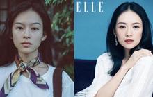 """Người mẫu Việt bất ngờ được truyền thông Trung Quốc """"săn lùng"""" vì quá giống Chương Tử Di"""