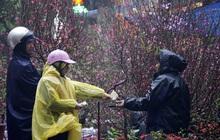 Miền Bắc sắp đón đợt mưa rét, vùng núi cao dưới 5 độ, Hà Nội thấp nhất 13 độ