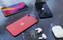 Phiên bản thu nhỏ của iPhone 12: iPhone SE Plus lộ thông số kỹ thuật và giá bán, dự kiến ra mắt tháng 3/2021