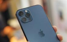 Đầu năm 2021, liệu những chiếc iPhone xách tay có còn thực sự là một món hời?