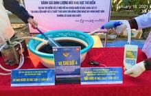 Hà Nội: Bãi rác Nam Sơn sạch 100% mùi hôi thối sau 3 tuần thí điểm xử lý bằng công nghệ Nano Nhật Bản