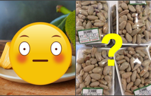 """Một loại hạt mà nhiều người Việt không dám ăn vì sợ """"xì hơi thúi"""", xuất khẩu qua Nhật thành món đắt tiền bán ở siêu thị?"""
