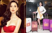 Mỹ nhân Việt tham dự đấu trường quốc tế bị hải quan thu giữ hành lý vì nghi ngờ buôn lậu, ra mức phạt gần 100 triệu đồng?
