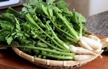 """Bộ phận """"bổ tựa nhân sâm"""" của củ cải, tận dụng có thể kéo dài thanh xuân và trị bệnh rất tốt nhưng nhiều người vẫn vô tư ném bỏ"""