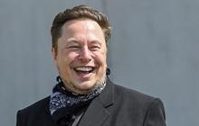 """Lý thuyết """"kẻ ngốc hơn"""" lý giải việc có 1 cơ số người xa lạ đang âm thầm giúp Elon Musk giàu nhanh chóng mặt, vượt từ Bill Gates tới Warren Buffett"""